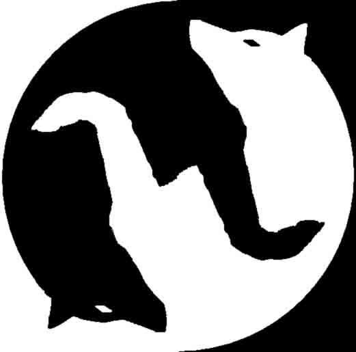 Картинки по запросу борьба волков
